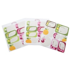 Kilner Fruit Blossom Labels Pack Of 24