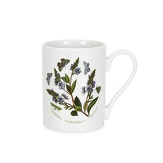 Portmeirion Botanic Garden - Coffee Mug Set Of 6