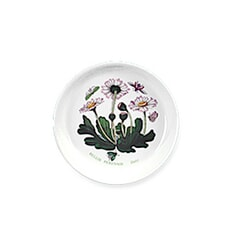 Portmeirion Botanic Garden - Sweet Dish Set Of 2