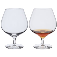 Dartington Wine Master Brandy Pair