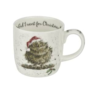 Wrendale Owl I Want For Christmas Mug