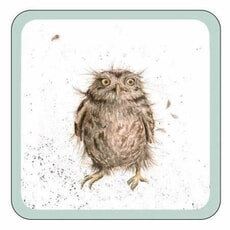 Wrendale Coaster What A Hoot Owl - Single
