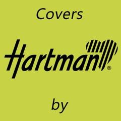 Hartman 6 Seat Rectangular Set Cover - Large