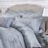 Dorma small 4521A