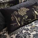 Manchurian Cushion