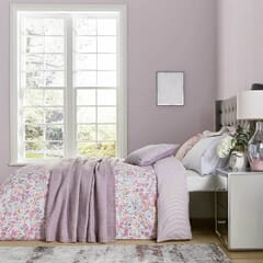 Calm Daisy Pink/Lilac